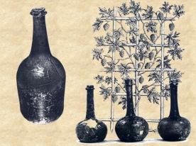 cferland-bouteilles-nouvelle-france