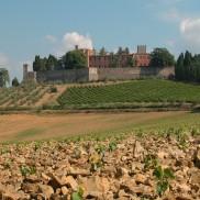 cferland-castello di Brolio